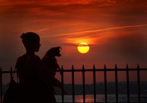 Promenade sunset