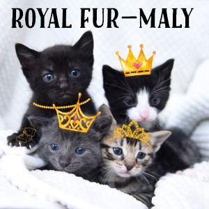 Royal Fur-maly