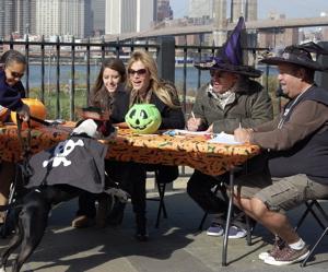the judges seem to be enjoying this pirate/dog